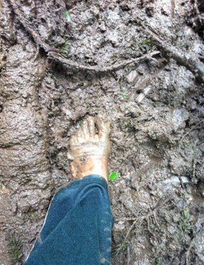On the Barefoot Billion Walk Muddy footsteps