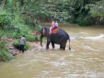 Sri Lanka elephant ride